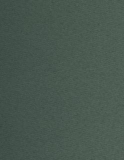 Venus FR 300cm vihreä