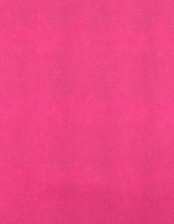 CHAMELEON -keinonahka aniliininpunainen