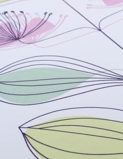 PAULINE-lajitelma lila