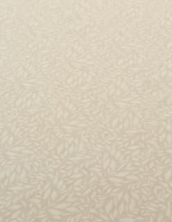 AMIRA beige