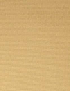 Zanzibar FR 280cm keltainen