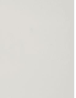 REMBRANDT -sametti valkoinen