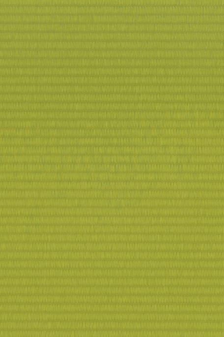 OPAQ COLOUR -tekninen kangas vaaleanvihreä