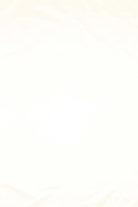 PAKSU SILKKI valkoinen
